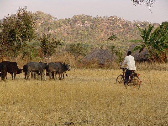 redrock-tribal-images (4)